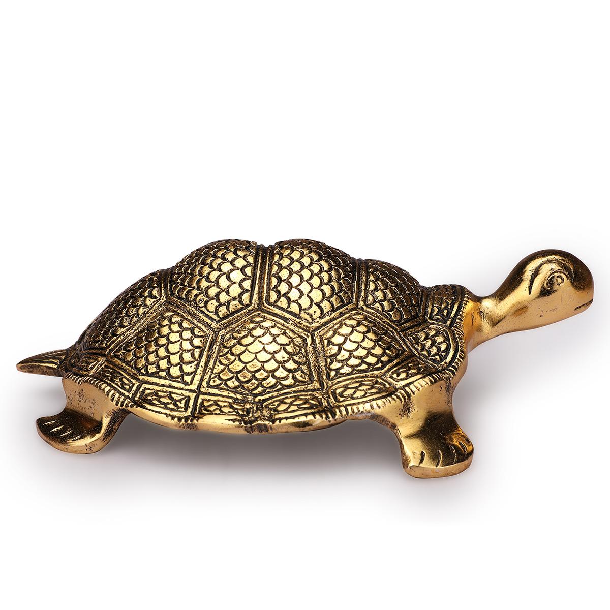 Tortoies 5'' Gold